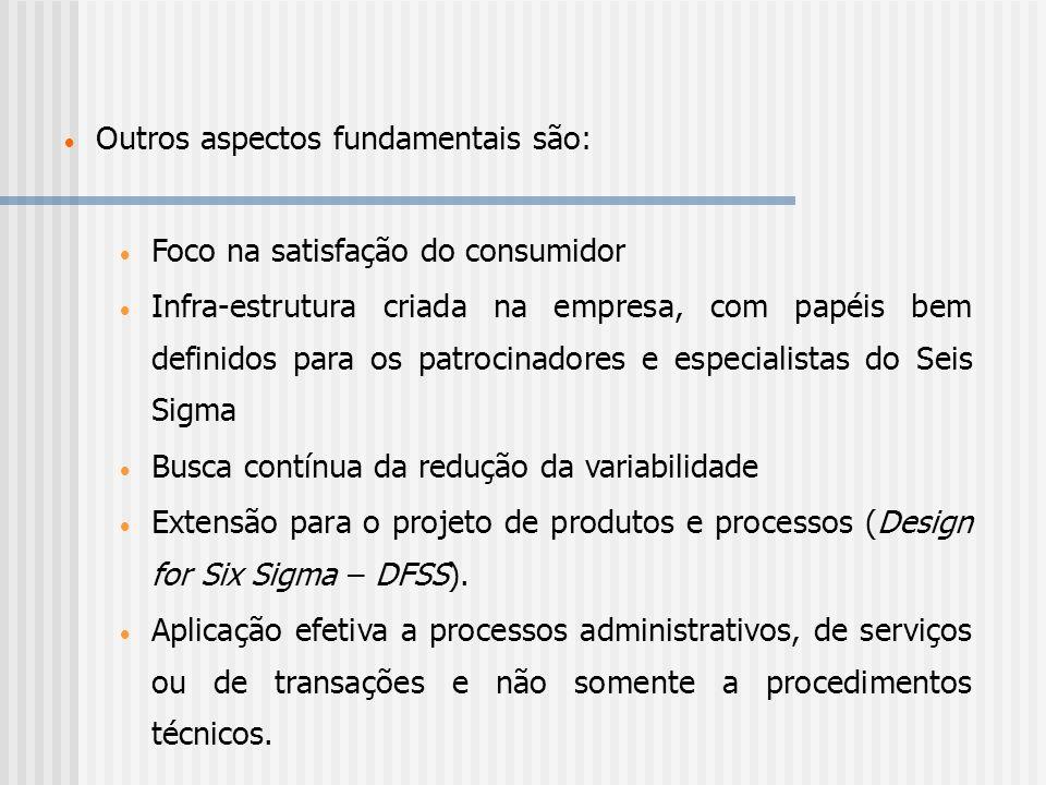 Outros aspectos fundamentais são: Foco na satisfação do consumidor Infra-estrutura criada na empresa, com papéis bem definidos para os patrocinadores