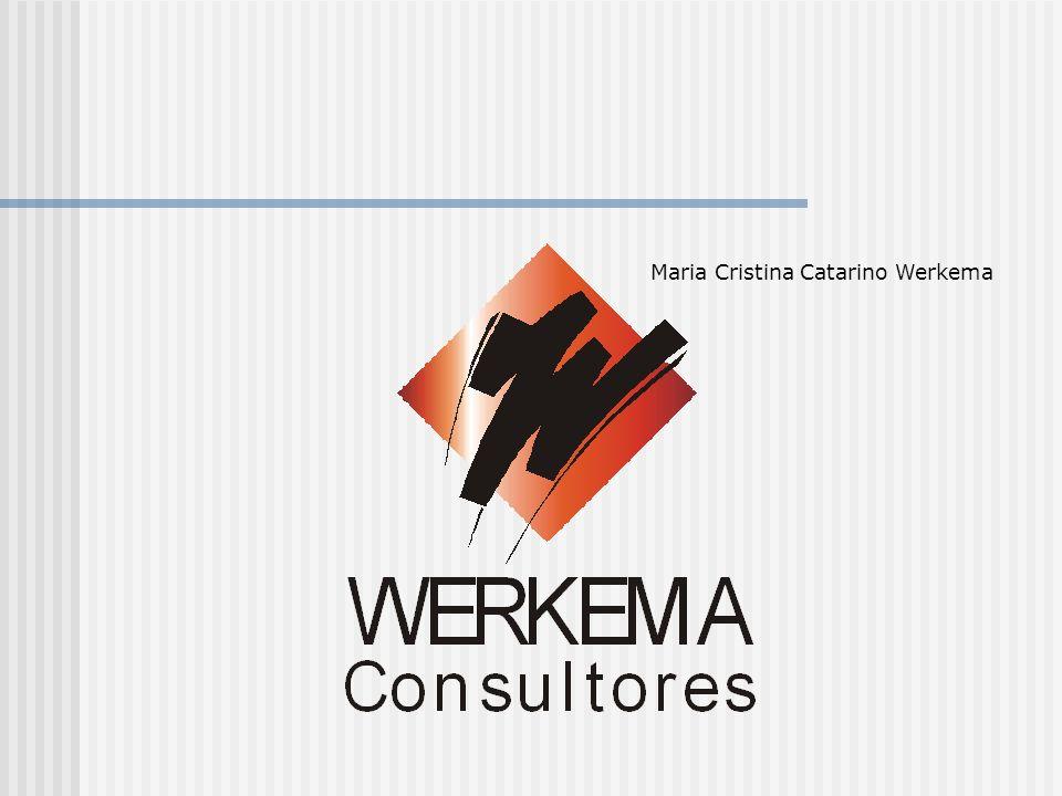 Maria Cristina Catarino Werkema