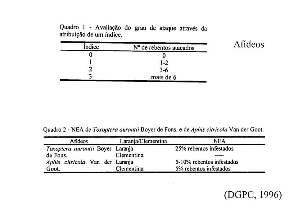 CITRINOS - ESTIMATIVA DO RISCO - Afídeos: - identificação das espécies - percentagem de ocupação (através do uso de círculo de d= 56cm) - nº de afídeo