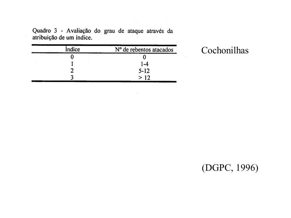 CITRINOS - ESTIMATIVA DO RISCO - Cochonilhas (identificação das espécies): 1- cochonilha algodão (P. citri Risso) 2- cochonilha negra (S. oleae Bern)