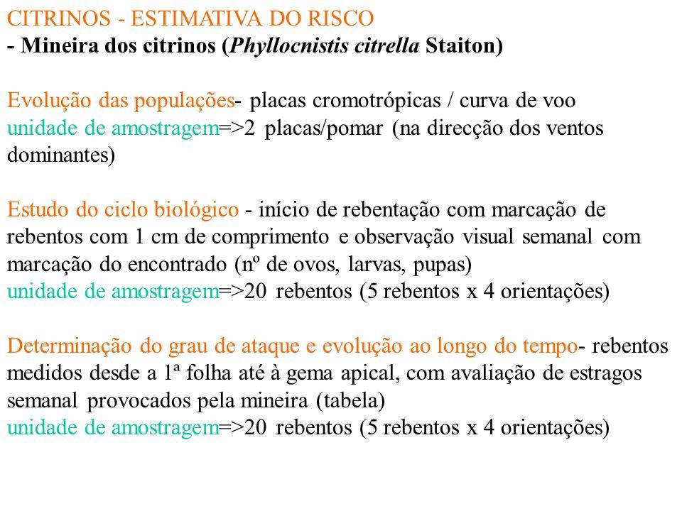 CITRINOS - ESTIMATIVA DO RISCO Mosca-da-fruta (Ceratitis capitata Wied.): - Evolução das populações- nas garrafas com feromona sexual/ curva de voo un