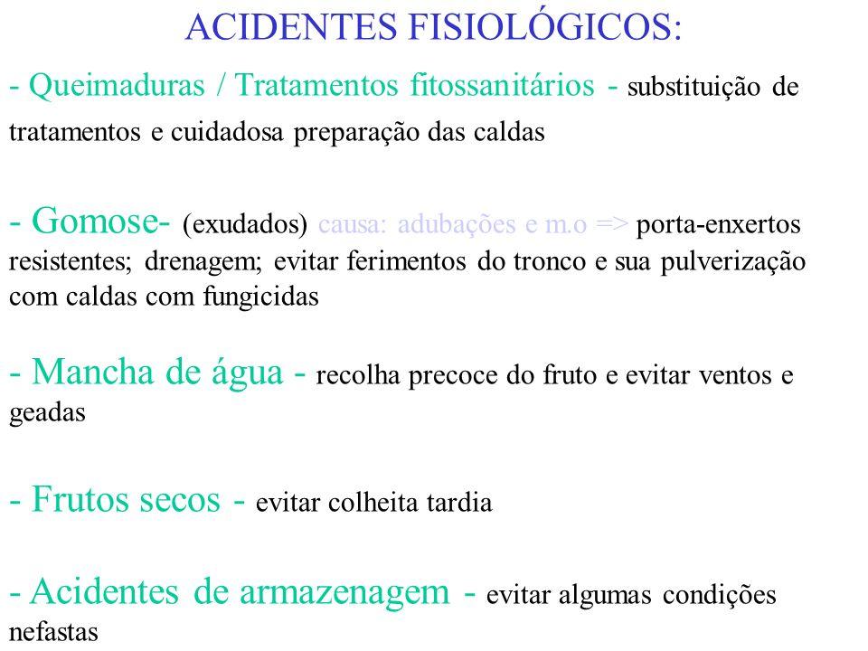 ACIDENTES FISIOLÓGICOS: - Asfixia radicular - plantação superficial e drenagem - Cloroses / Doenças de carência - ensaios com nutrientes - Mancha de ó