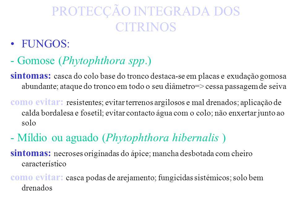 - Psorosis (A palhetase B escamação) - sintomas: frutos com manchas circulares, abundante exudação de goma como evitar - enxertia de borbulhas de árvo