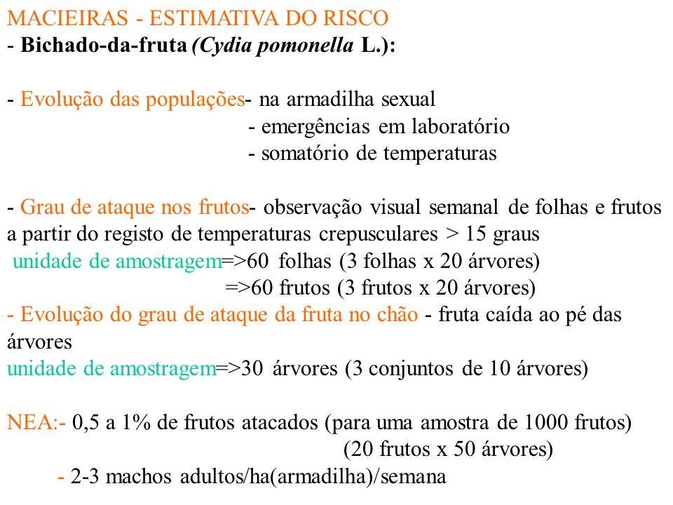 MACIEIRAS - ESTIMATIVA DO RISCO - Bichado-da-fruta (Cydia pomonella L.): - Evolução das populações- na armadilha sexual - emergências em laboratório - somatório de temperaturas - Grau de ataque nos frutos- observação visual semanal de folhas e frutos a partir do registo de temperaturas crepusculares > 15 graus unidade de amostragem=>60 folhas (3 folhas x 20 árvores) =>60 frutos (3 frutos x 20 árvores) - Evolução do grau de ataque da fruta no chão - fruta caída ao pé das árvores unidade de amostragem=>30 árvores (3 conjuntos de 10 árvores) NEA:- 0,5 a 1% de frutos atacados (para uma amostra de 1000 frutos) (20 frutos x 50 árvores) - 2-3 machos adultos/ha(armadilha)/semana