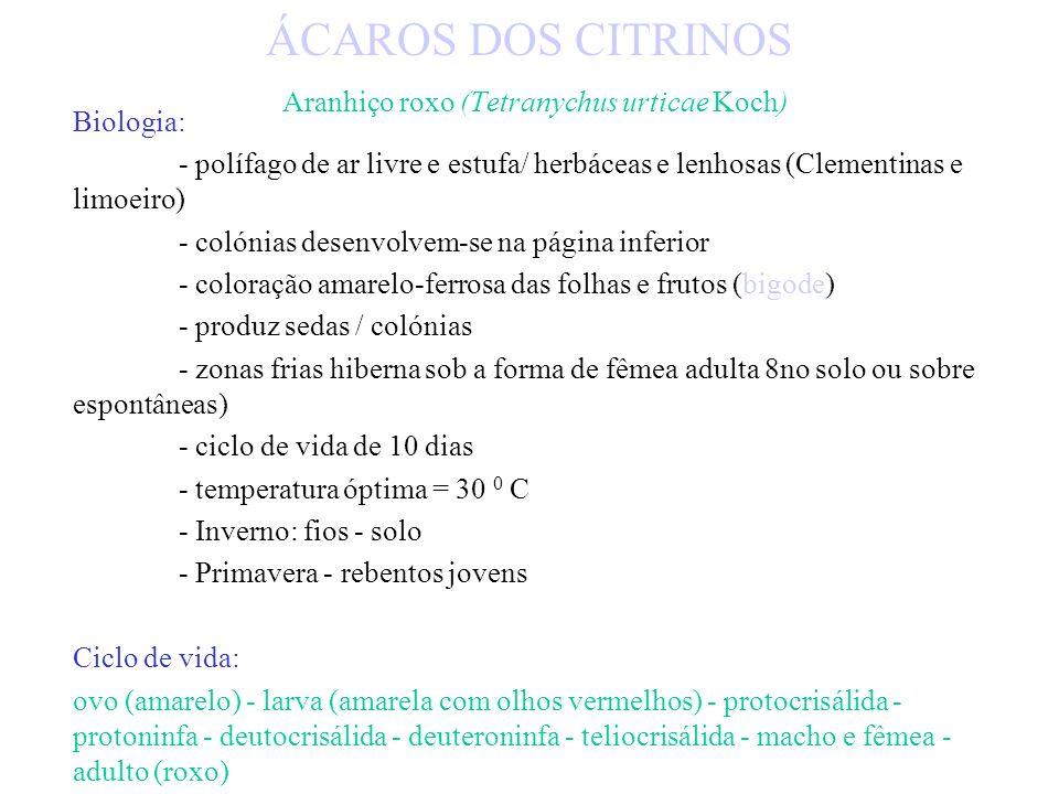 Luta química: - acaricidas específicos / resistência - óleos de Verão - piretróides usados contra afídeos - fosforados contra coccídeos Luta biológica