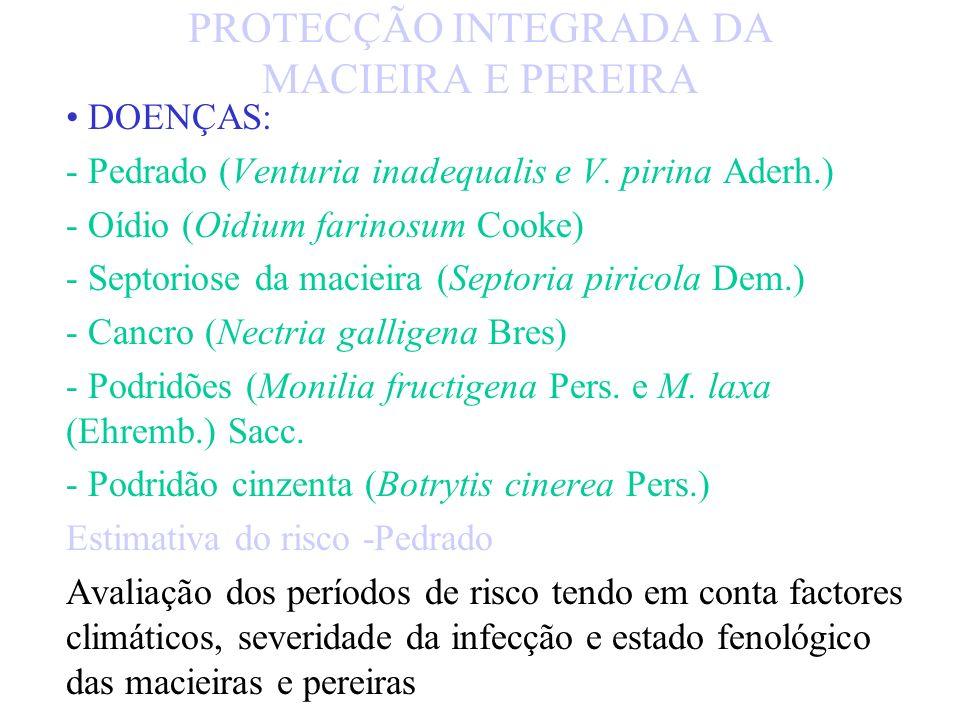 PRAGAS: - Bichado (Cydia pomonella L.) - Mosca da fruta (Ceratitis capitata Wied.) - Afídeos - Aranhiço vermelho (Panonychus ulmi Koch.) - Cochonilha