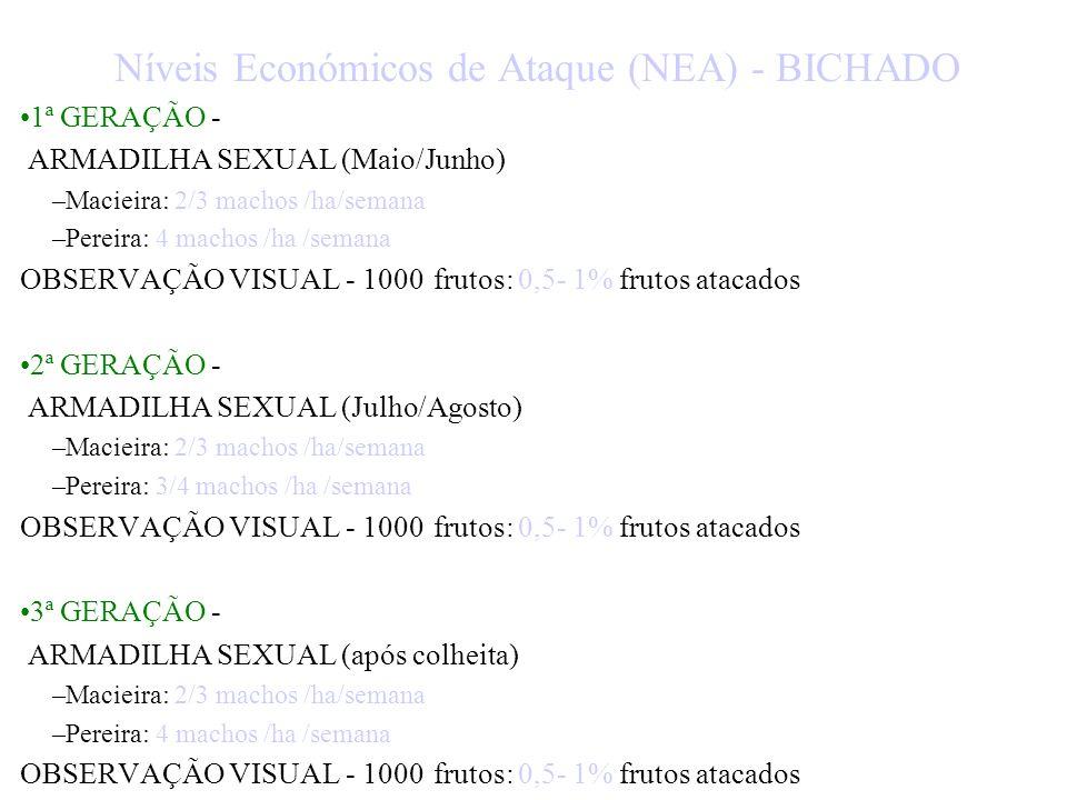 ESTIMATIVA DO RISCO: - Bichado DIRECTOS - Observação Visual INDIRECTOS: - Armadilhas Sexuais - Cintas-Armadilha - Somatório das temperaturas - Biológi