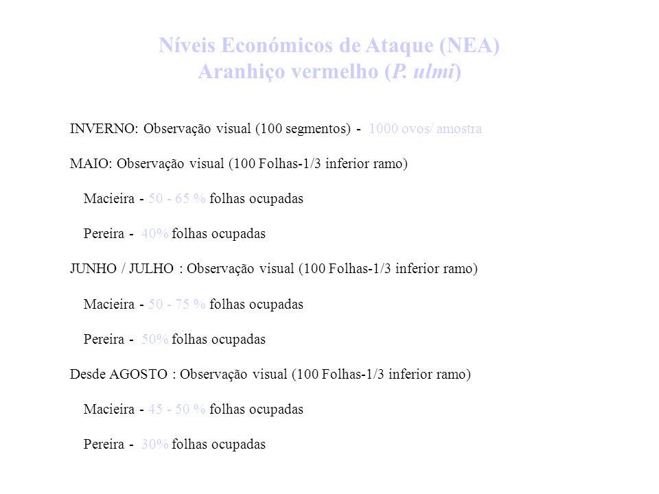 Níveis Económicos de Ataque (NEA) - AFÍDEOS AFÍDEO CINZENTO (Dysaphis plantaginea Pass.) Março - Abril: 1- 2 % inflorescências infestadas Maio: 1- 2 %