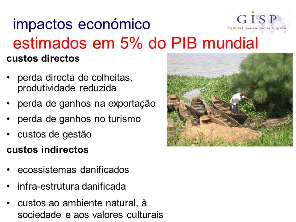 impactos económico estimados em 5% do PIB mundial custos directos perda directa de colheitas, produtividade reduzida perda de ganhos na exportação per