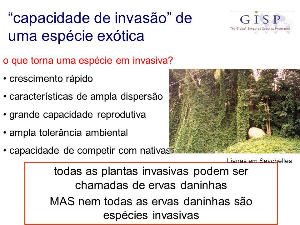 capacidade de invasão de uma espécie exótica o que torna uma espécie em invasiva? crescimento rápido características de ampla dispersão grande capacid