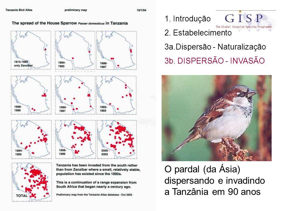 1. Introdução 2. Estabelecimento 3a.Dispersão - Naturalização 3b. DISPERSÃO - INVASÃO O pardal (da Ásia) dispersando e invadindo a Tanzânia em 90 anos