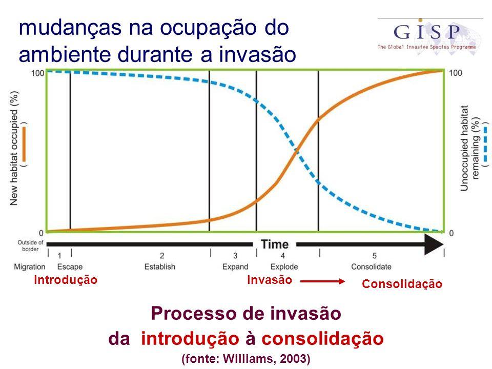 Processo de invasão da introdução à consolidação (fonte: Williams, 2003) IntroduçãoInvasão Consolidação mudanças na ocupação do ambiente durante a inv