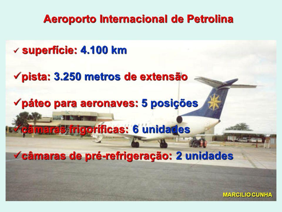 Aeroporto Internacional de Petrolina superfície: 4.100 km superfície: 4.100 km pista: 3.250 metros de extensão pista: 3.250 metros de extensão páteo para aeronaves: 5 posições páteo para aeronaves: 5 posições câmaras frigoríficas: 6 unidades câmaras frigoríficas: 6 unidades câmaras de pré-refrigeração: 2 unidades câmaras de pré-refrigeração: 2 unidades MARCILIO CUNHA