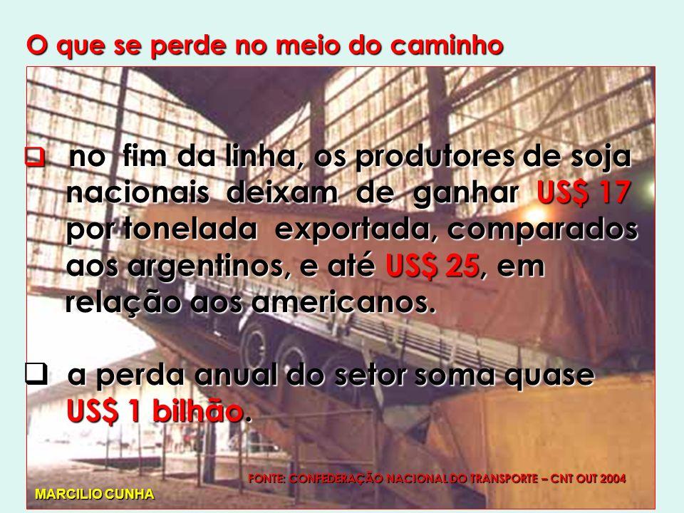 O que se perde no meio do caminho no fim da linha, os produtores de soja no fim da linha, os produtores de soja nacionais deixam de ganhar US$ 17 nacionais deixam de ganhar US$ 17 por tonelada exportada, comparados por tonelada exportada, comparados aos argentinos, e até US$ 25, em aos argentinos, e até US$ 25, em relação aos americanos.
