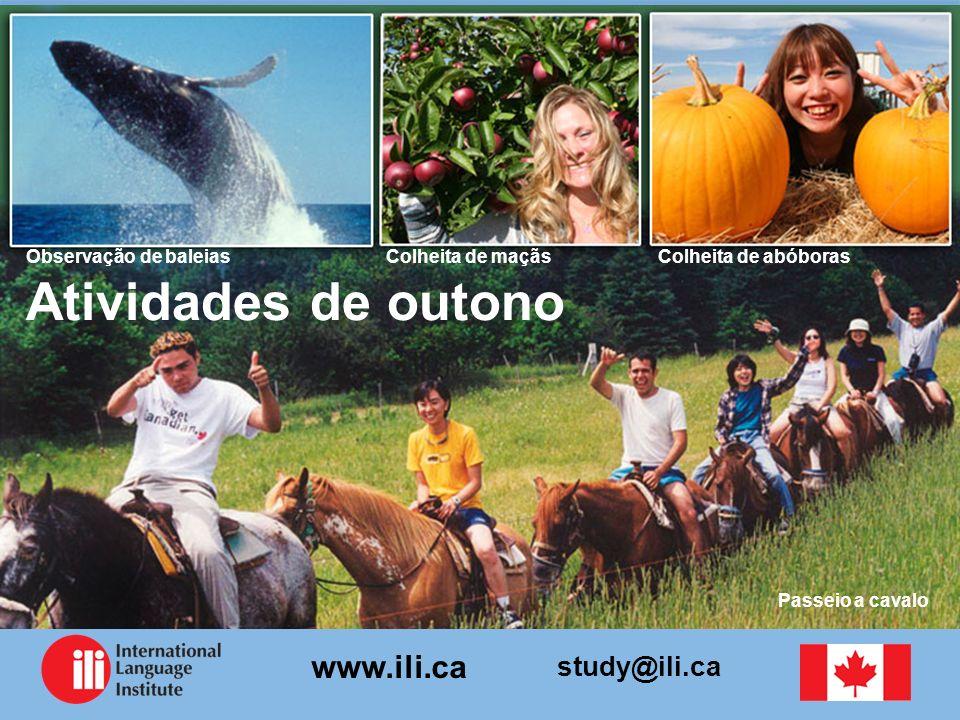 study@ili.ca www.ili.ca Atividades de outono Colheita de abóborasColheita de maçãsObservação de baleias Passeio a cavalo