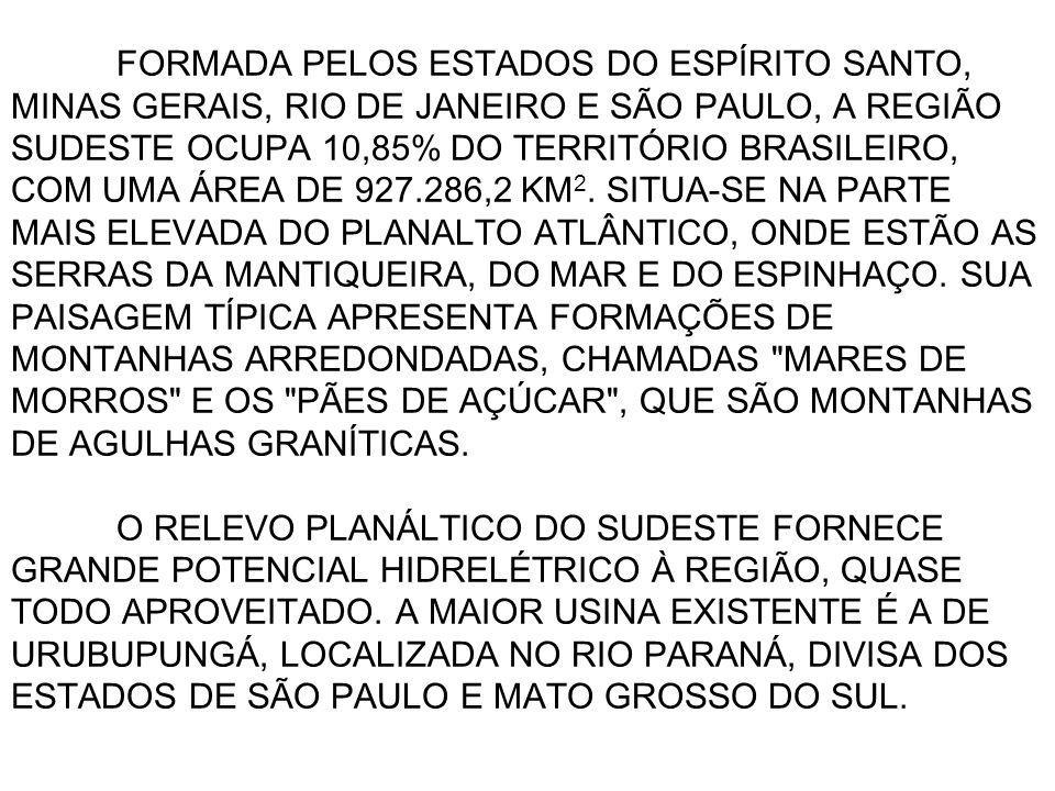 FORMADA PELOS ESTADOS DO ESPÍRITO SANTO, MINAS GERAIS, RIO DE JANEIRO E SÃO PAULO, A REGIÃO SUDESTE OCUPA 10,85% DO TERRITÓRIO BRASILEIRO, COM UMA ÁRE