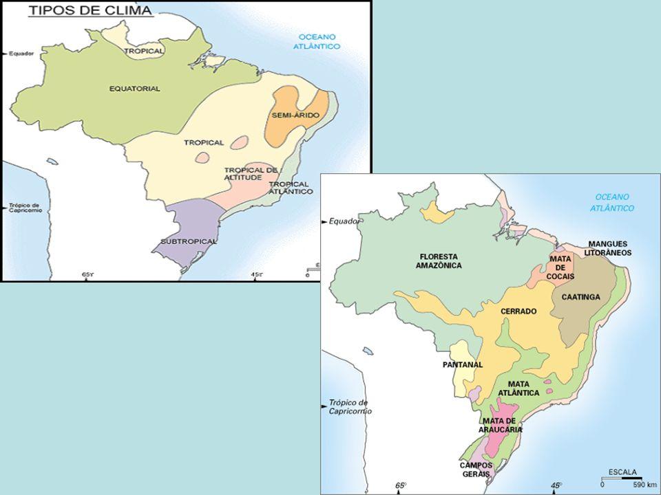 OCUPANDO ÁREAS DAS BACIAS HIDROGRÁFICAS DE LESTE, SUDESTE-SUL, PLATINA E DO SÃO FRANCISCO, CONTA COM UMA SÉRIE DE USINAS HIDRELÉTRICAS, DESTACANDO-SE EM MINAS GERAIS AS DE TRÊS MARIAS NO RIO SÃO FRANCISCO, E FURNAS NO RIO GRANDE; EM SÃO PAULO ENCONTRA-SE A USINA DE ILHA SOLTEIRA,NO RIO PARANÁ.