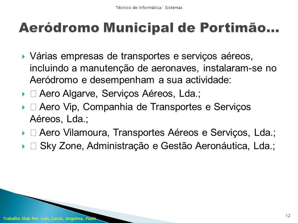 Várias empresas de transportes e serviços aéreos, incluindo a manutenção de aeronaves, instalaram-se no Aeródromo e desempenham a sua actividade: Aero