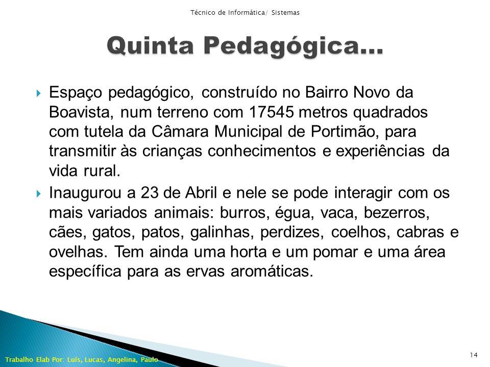 Espaço pedagógico, construído no Bairro Novo da Boavista, num terreno com 17545 metros quadrados com tutela da Câmara Municipal de Portimão, para tran