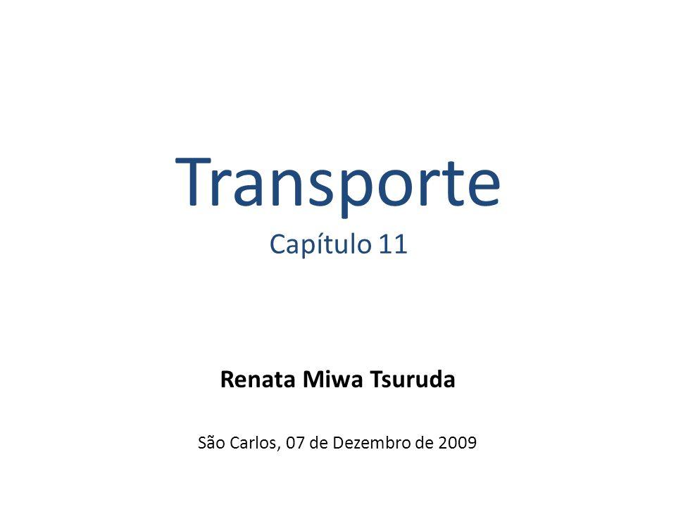 Transporte Capítulo 11 Renata Miwa Tsuruda São Carlos, 07 de Dezembro de 2009