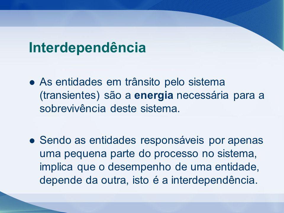 Interdependência As entidades em trânsito pelo sistema (transientes) são a energia necessária para a sobrevivência deste sistema. Sendo as entidades r