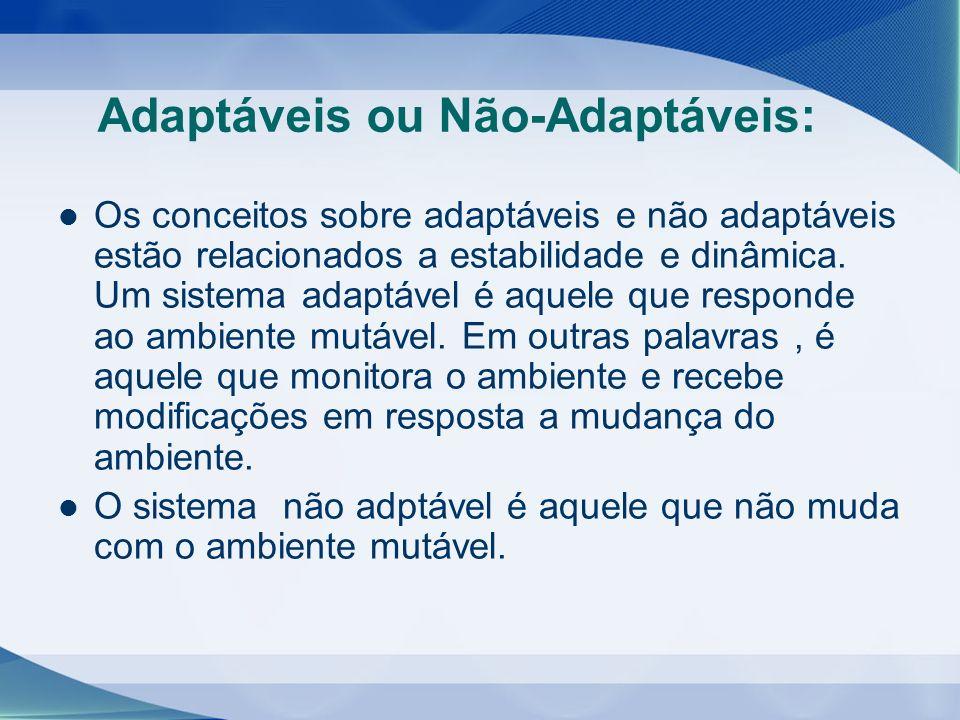 Adaptáveis ou Não-Adaptáveis: Os conceitos sobre adaptáveis e não adaptáveis estão relacionados a estabilidade e dinâmica. Um sistema adaptável é aque