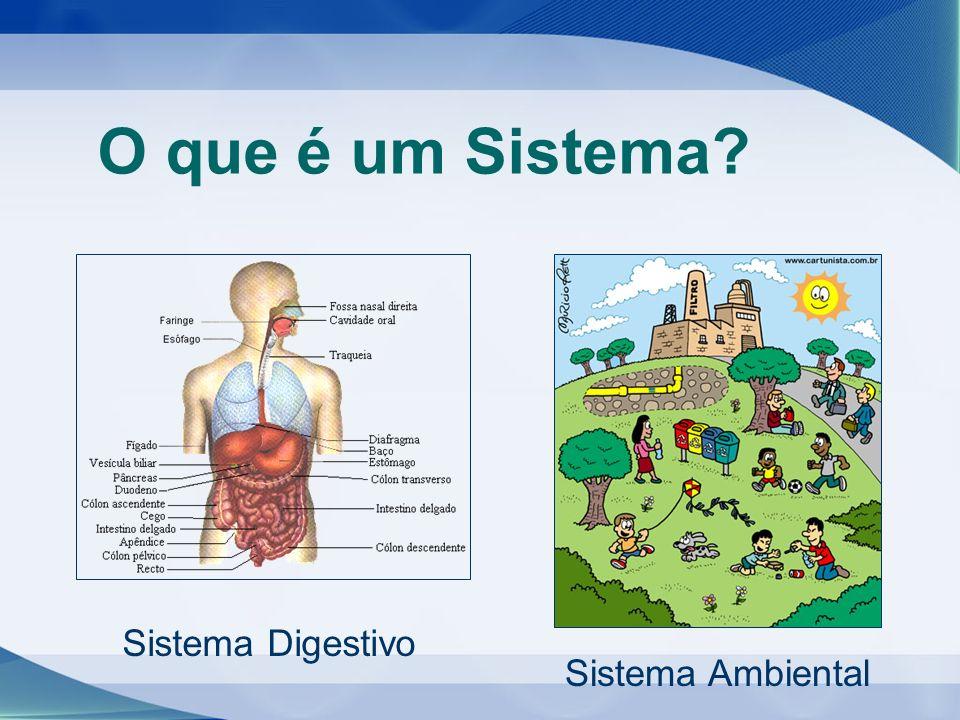 O que é um Sistema? Sistema Digestivo Sistema Ambiental