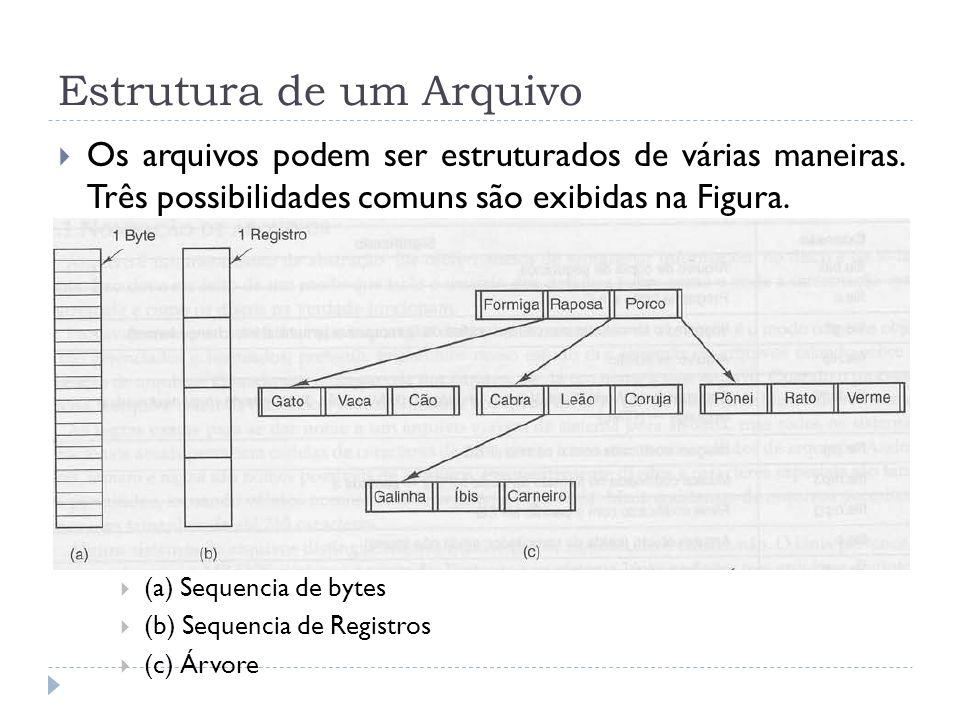 Estrutura de um Arquivo Os arquivos podem ser estruturados de várias maneiras. Três possibilidades comuns são exibidas na Figura. (a) Sequencia de byt