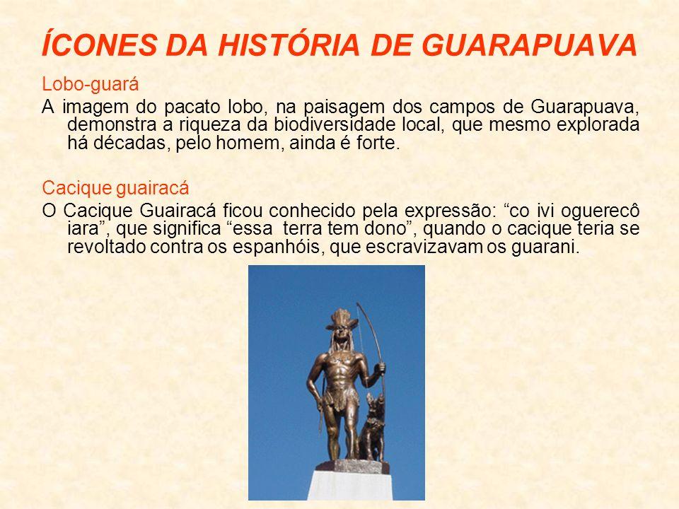 ÍCONES DA HISTÓRIA DE GUARAPUAVA Lobo-guará A imagem do pacato lobo, na paisagem dos campos de Guarapuava, demonstra a riqueza da biodiversidade local