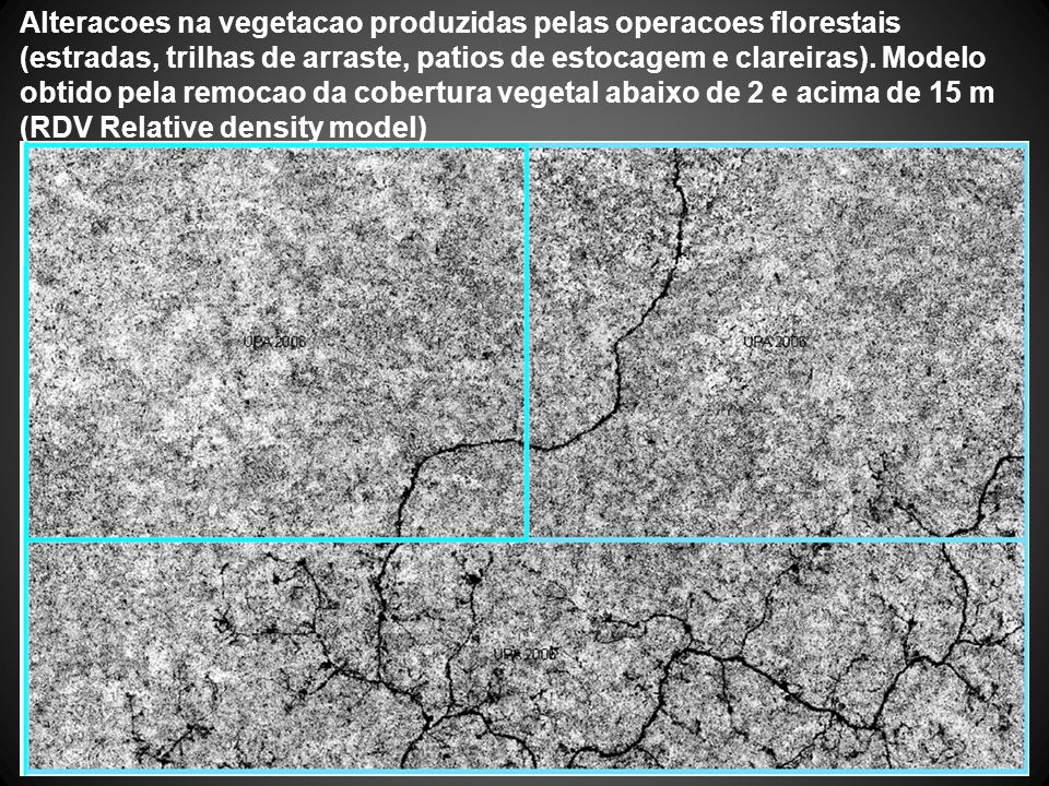 Alteracoes na vegetacao produzidas pelas operacoes florestais (estradas, trilhas de arraste, patios de estocagem e clareiras).