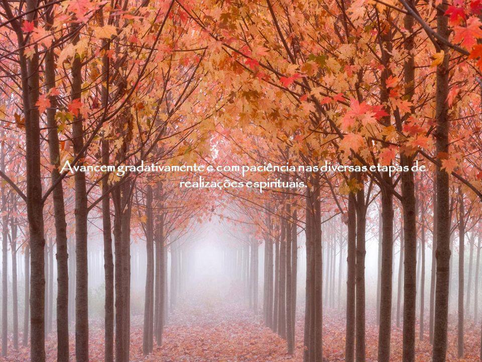 Não desanimem se o seu plano divino lhes parece irrisório e insignificante, pois na verdade todas as tarefas são nobres e amplamente necessárias.