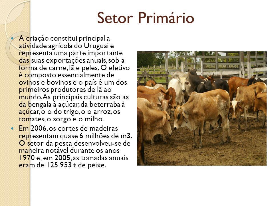 Setor Primário A criação constitui principal a atividade agrícola do Uruguai e representa uma parte importante das suas exportações anuais, sob a form