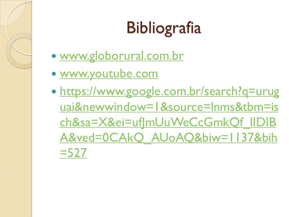 Bibliografia www.globorural.com.br www.youtube.com https://www.google.com.br/search?q=urug uai&newwindow=1&source=lnms&tbm=is ch&sa=X&ei=ufJmUuWeCcGmk