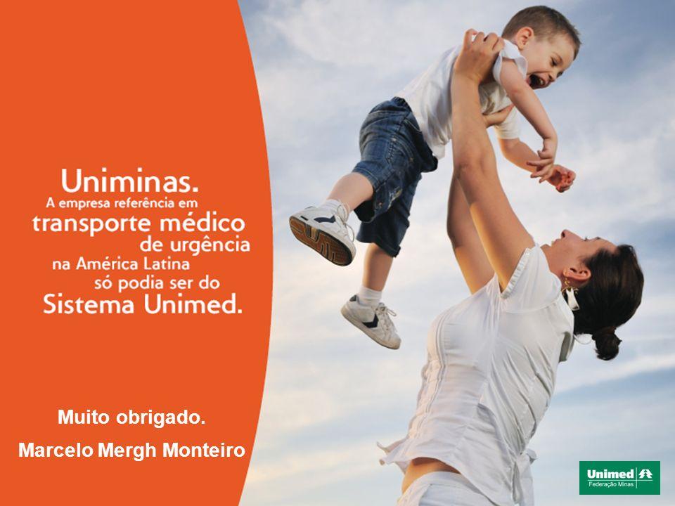 Muito obrigado. Marcelo Mergh Monteiro