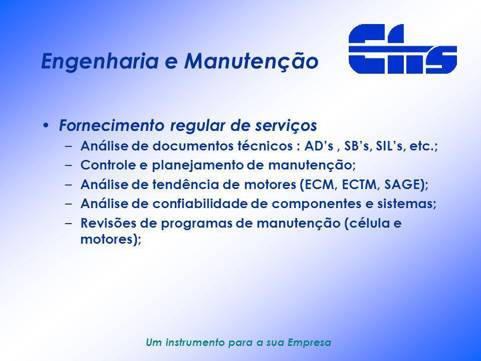 Um instrumento para a sua Empresa Engenharia e Manutenção Estrutura operacional de manutenção – Pessoal qualificado e estrutura organizacional; – Ferr
