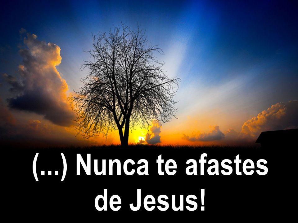 (...) Nunca te afastes de Jesus!