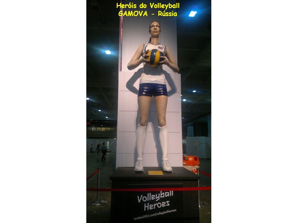 Heróis do Volleyball GAMOVA - Rússia
