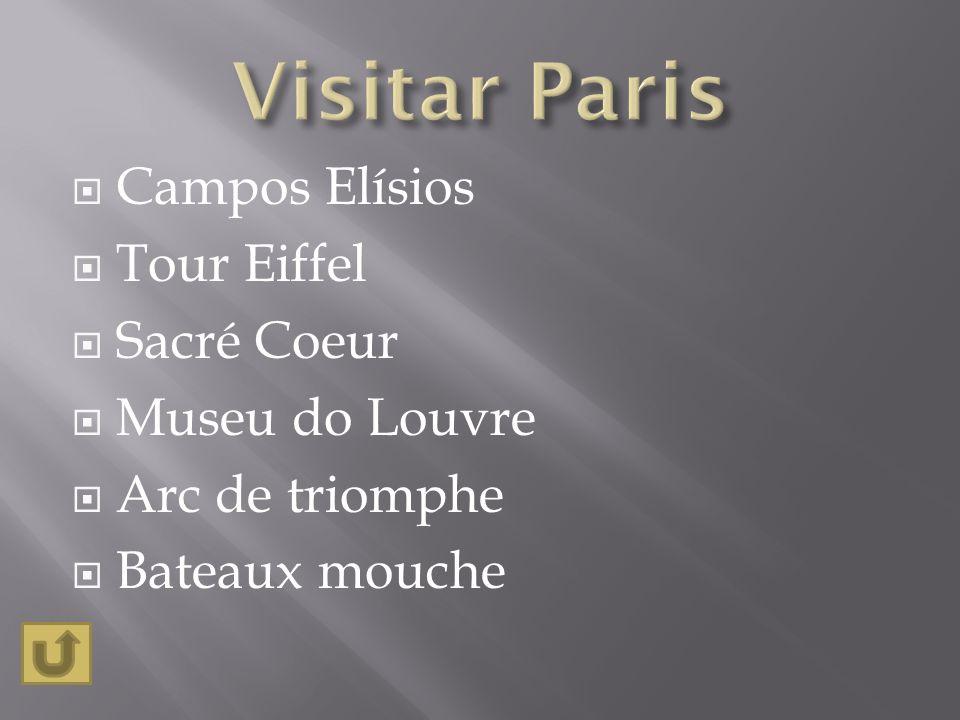 Campos Elísios Tour Eiffel Sacré Coeur Museu do Louvre Arc de triomphe Bateaux mouche