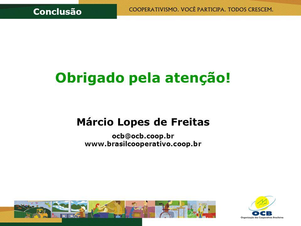 Conclusão Obrigado pela atenção! Márcio Lopes de Freitas ocb@ocb.coop.br www.brasilcooperativo.coop.br