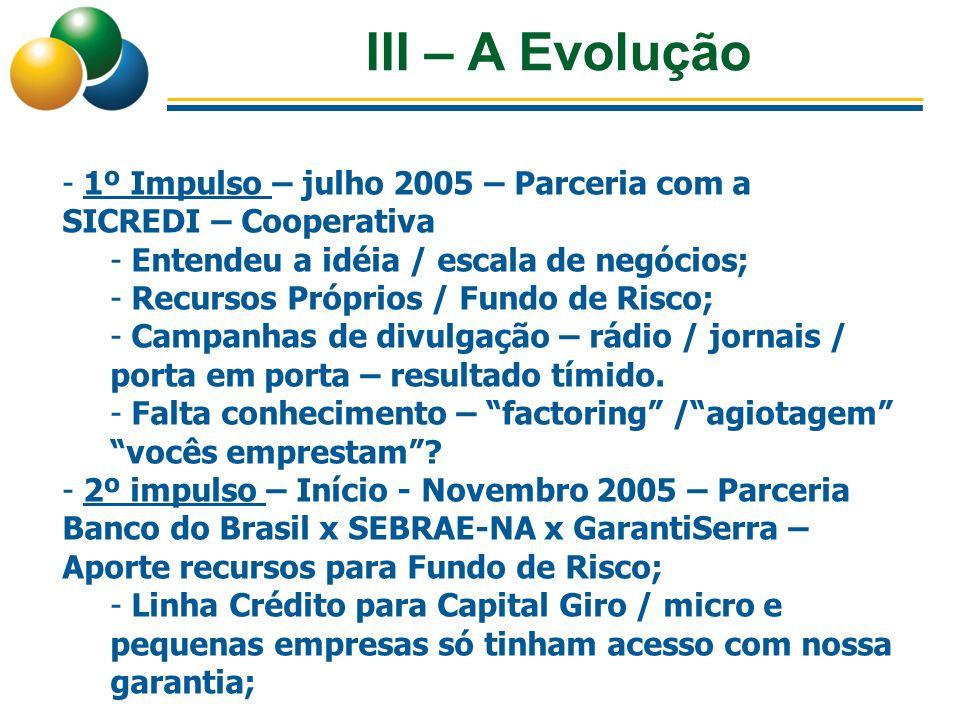 III – A Evolução - 1º Impulso – julho 2005 – Parceria com a SICREDI – Cooperativa - Entendeu a idéia / escala de negócios; - Recursos Próprios / Fundo