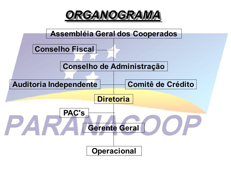 ORGANOGRAMA Conselho Fiscal Auditoria Independente Comitê de Crédito PAC's Operacional Gerente Geral Diretoria Conselho de Administração Assembléia Ge