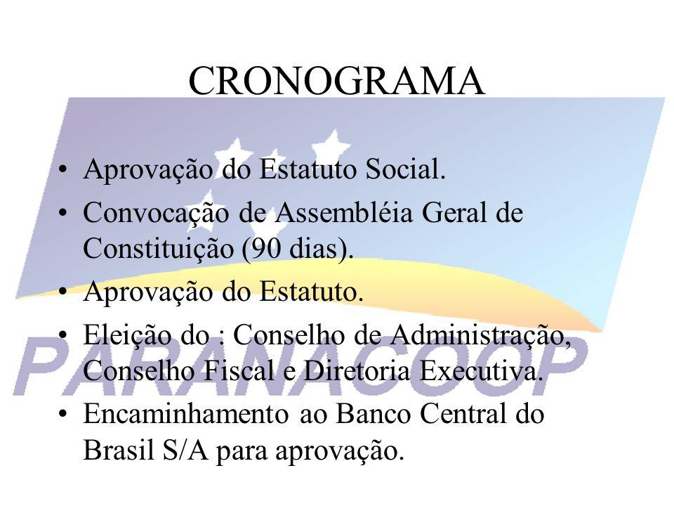 CRONOGRAMA Aprovação do Estatuto Social. Convocação de Assembléia Geral de Constituição (90 dias). Aprovação do Estatuto. Eleição do : Conselho de Adm