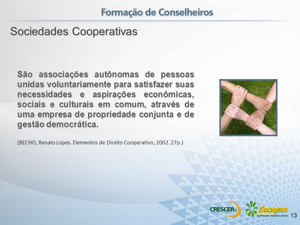 São associações autônomas de pessoas unidas voluntariamente para satisfazer suas necessidades e aspirações econômicas, sociais e culturais em comum, a