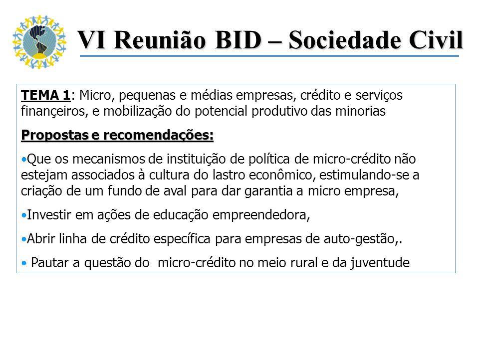 VI Reunião BID – Sociedade Civil TEMA 1: Micro, pequenas e médias empresas, crédito e serviços finançeiros, e mobilização do potencial produtivo das m