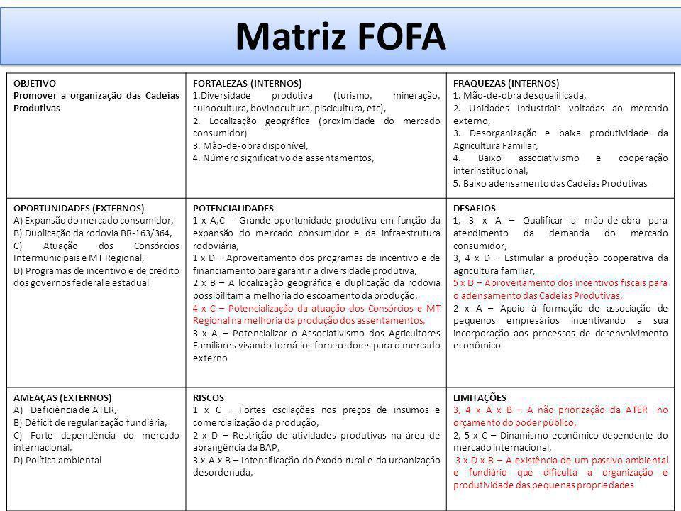 Matriz FOFA OBJETIVO Promover a organização das Cadeias Produtivas FORTALEZAS (INTERNOS) 1.Diversidade produtiva (turismo, mineração, suinocultura, bo