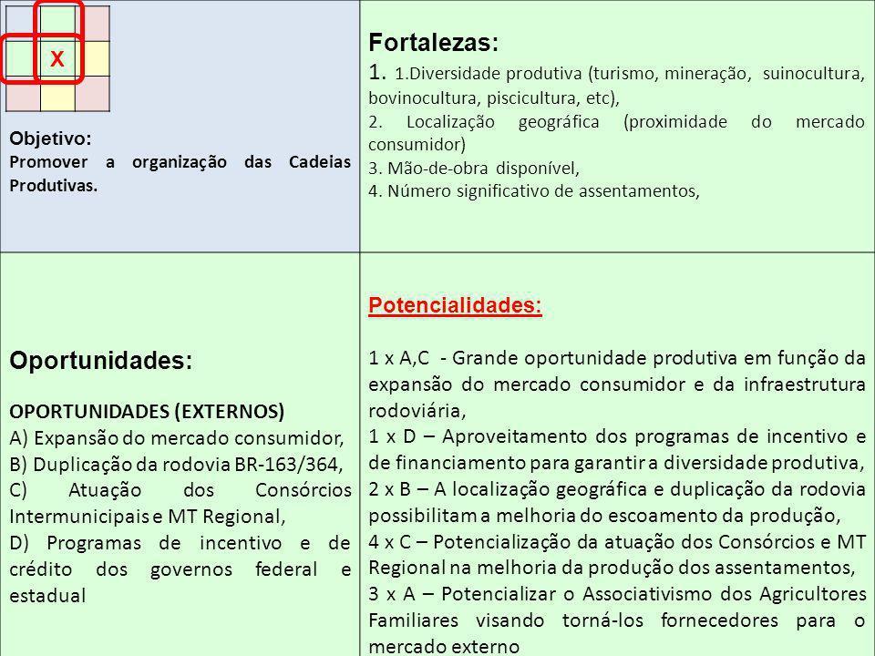 Objetivo: Promover a organização das Cadeias Produtivas. Fortalezas: 1. 1.Diversidade produtiva (turismo, mineração, suinocultura, bovinocultura, pisc
