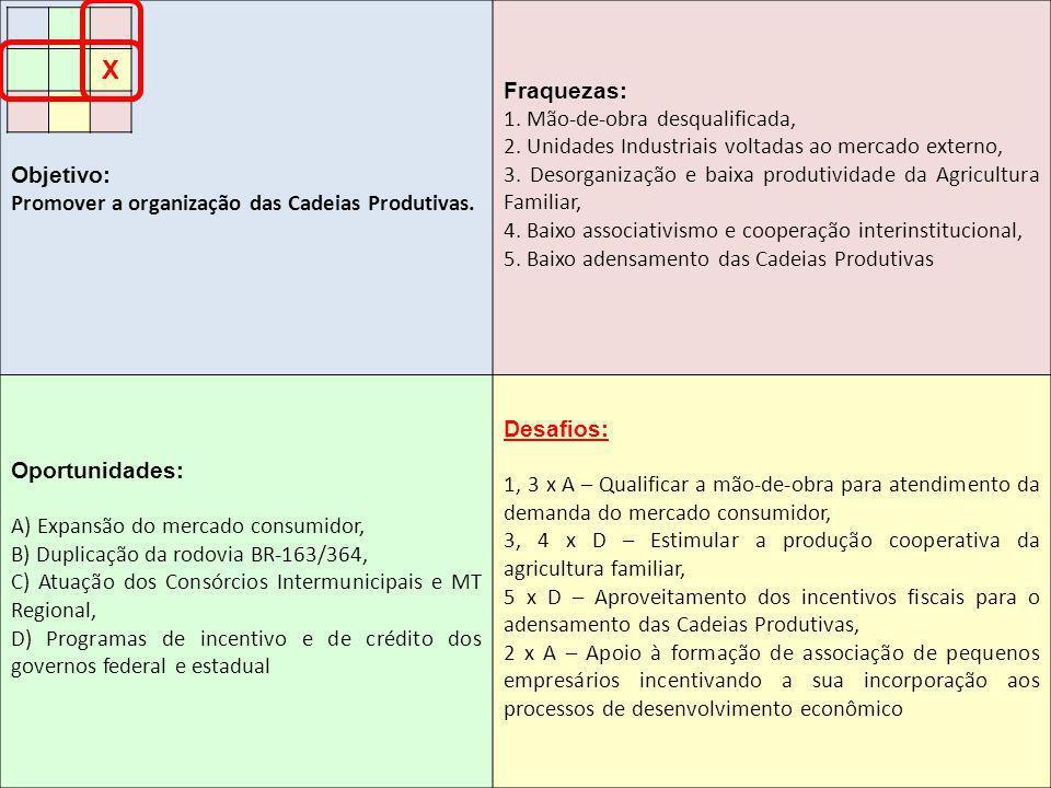 Objetivo: Promover a organização das Cadeias Produtivas. Fraquezas: 1. Mão-de-obra desqualificada, 2. Unidades Industriais voltadas ao mercado externo