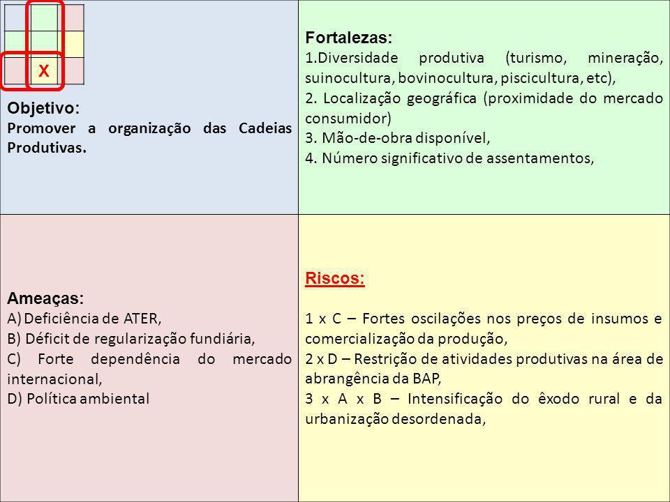 Objetivo: Promover a organização das Cadeias Produtivas. Fortalezas: 1.Diversidade produtiva (turismo, mineração, suinocultura, bovinocultura, piscicu