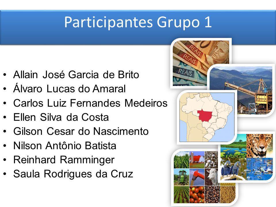 Participantes Grupo 1 Allain José Garcia de Brito Álvaro Lucas do Amaral Carlos Luiz Fernandes Medeiros Ellen Silva da Costa Gilson Cesar do Nasciment