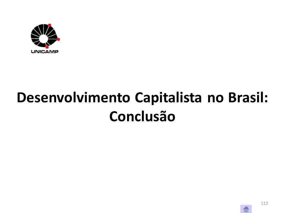 Desenvolvimento Capitalista no Brasil: Conclusão 113